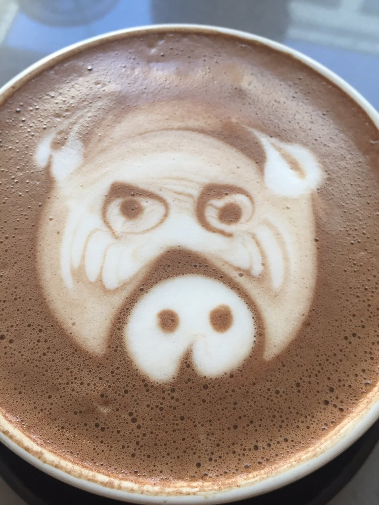 Photo Of Public Domain Coffee Portland Or United States Requested Teddy Bear