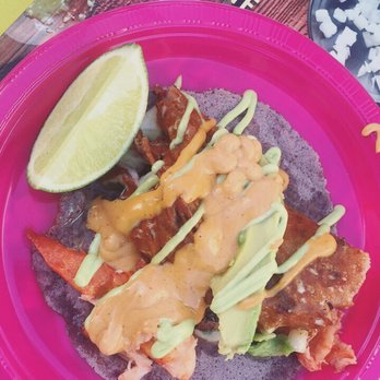 7cd73dab731e SOS Wild and Crazy Taco Night - 630 Photos   41 Reviews - Festivals ...