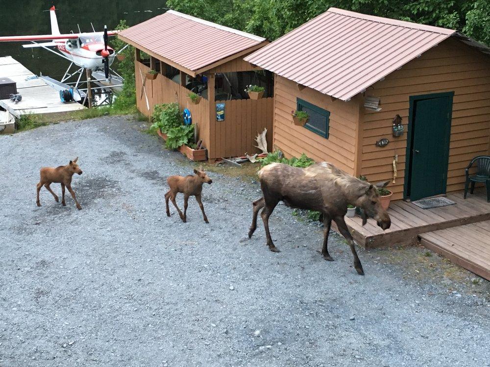 Bear Lake Lodgings: 33820 Bear Lake Rd, Seward, AK