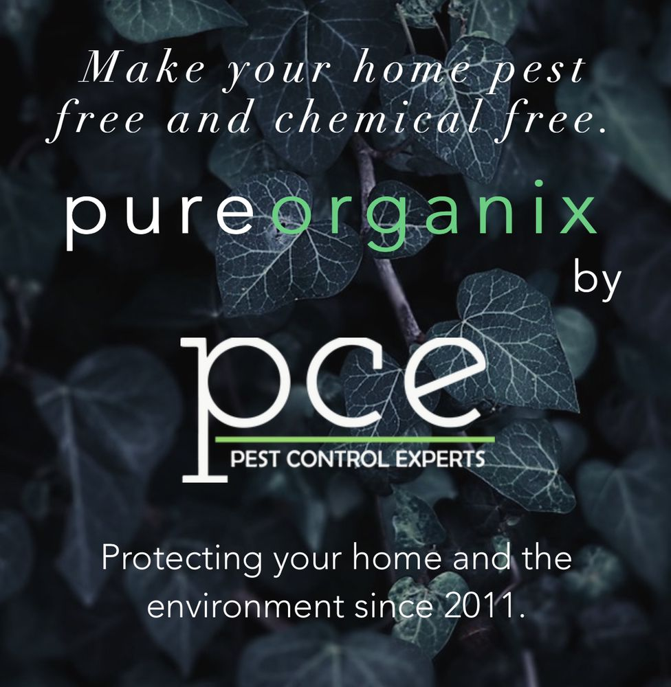 Pest Control Experts: 12331 Hwy 11, Chelsea, AL