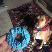 """Donuts"" for pups from Big Bad Woof for Porter's 2nd Adoptiversary! Safe to say they're dog-approved!"