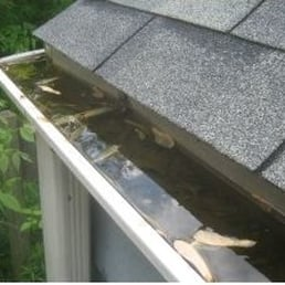 All American Rain Gutter Gutter Services Eagle Id