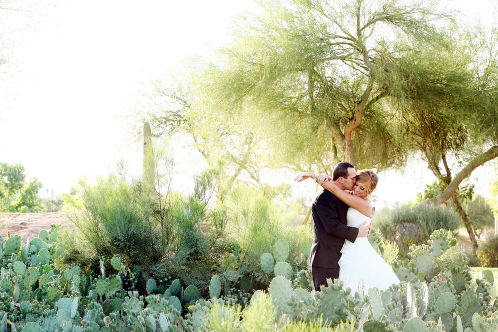 Wedgewood Weddings Palm Valley