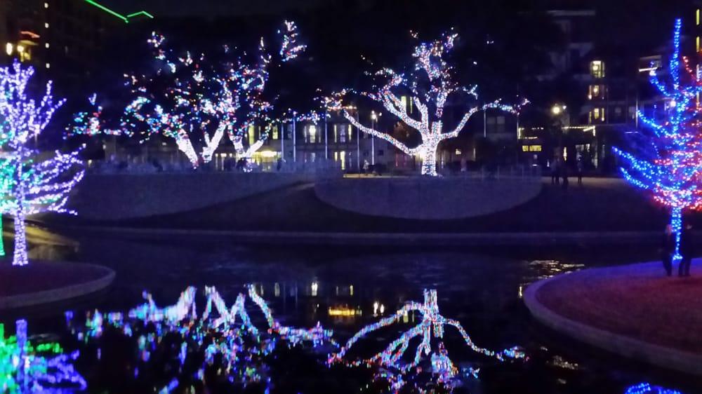 Vitruvian Lights - Magical Night Of Lights