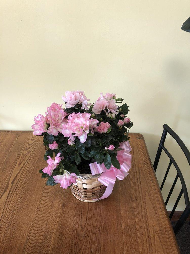 AJP Floral: 345 N 15th St, Sebring, OH
