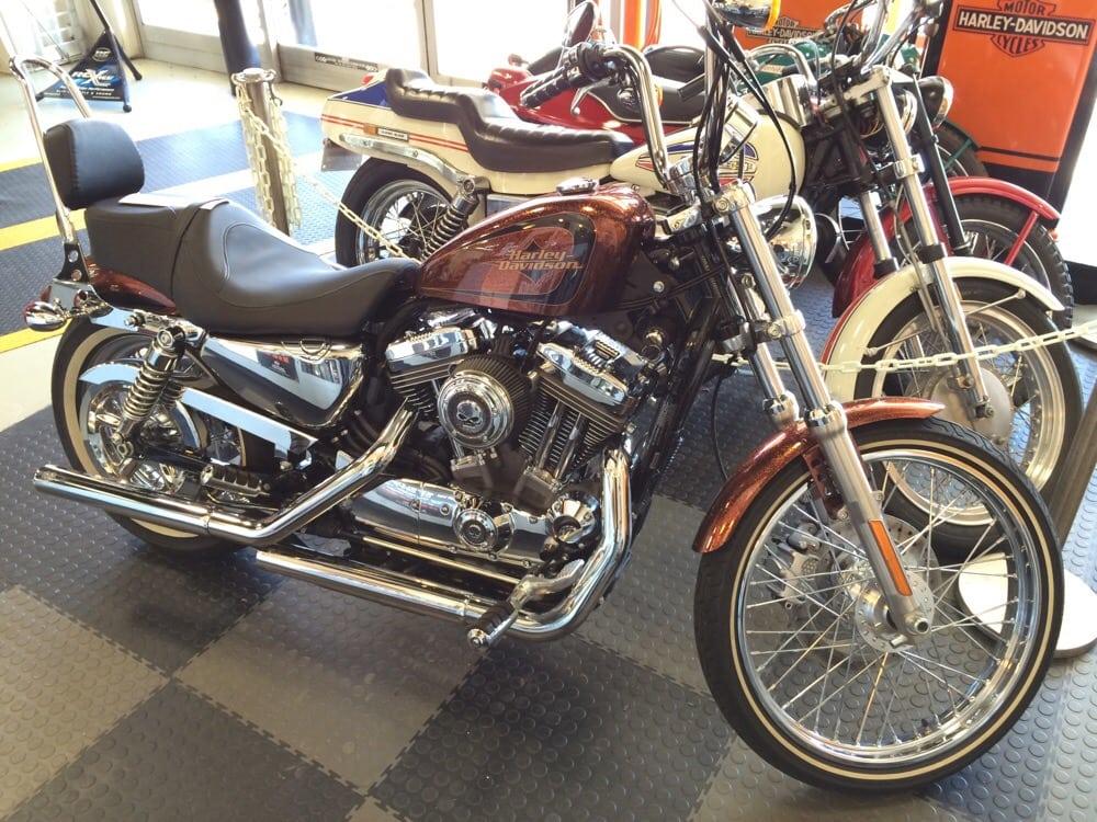 Black Cat Harley Davidson Rocky Mount Nc