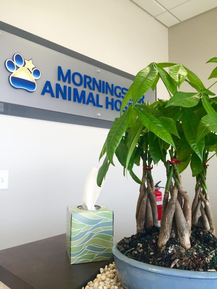 Morningstar Animal Hospital: 164 Summer St, Kingston, MA