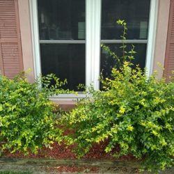 Photo of Biddleu0027s Pristine Windows u0026 Doors - Crosby TX United States & Biddleu0027s Pristine Windows u0026 Doors - 21 Photos - Windows Installation ...