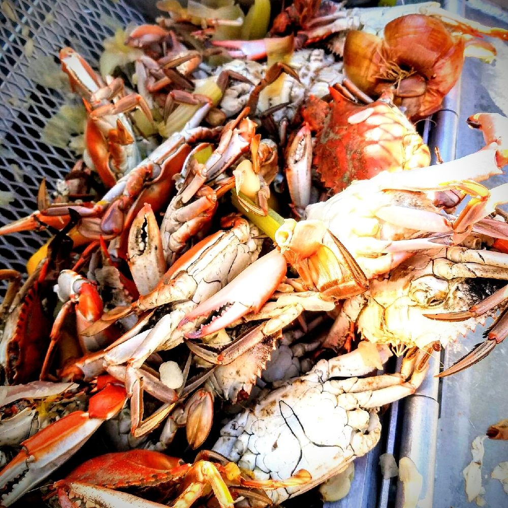 Live blue crab order - Yelp