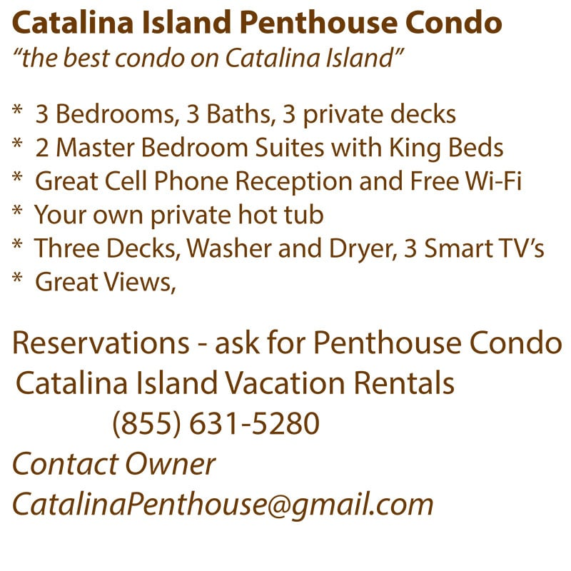 The Catalina Penthouse: 360 Clemente Ave, Avalon, CA