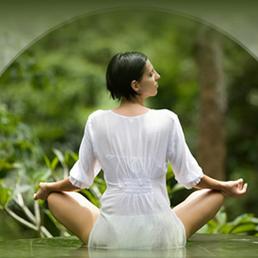 kamlai thai massage massage drakestr 40 steglitz berlin germany phone number yelp. Black Bedroom Furniture Sets. Home Design Ideas