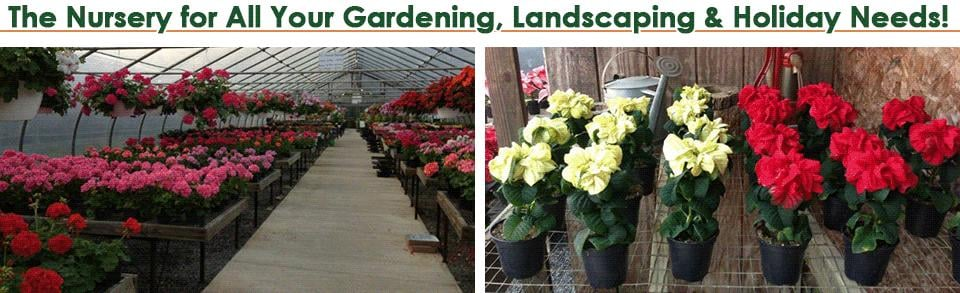 Fritz Farm & Nursery: 1001 Hollingsworth Rd, Joppa, MD