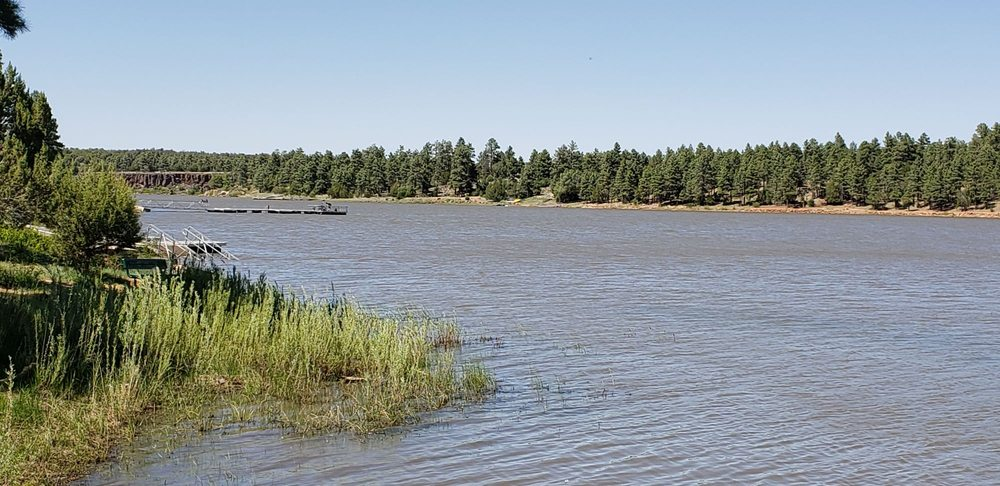 Fool Hollow State Park: 1500 N Fool Hollow Lake, Show Low, AZ