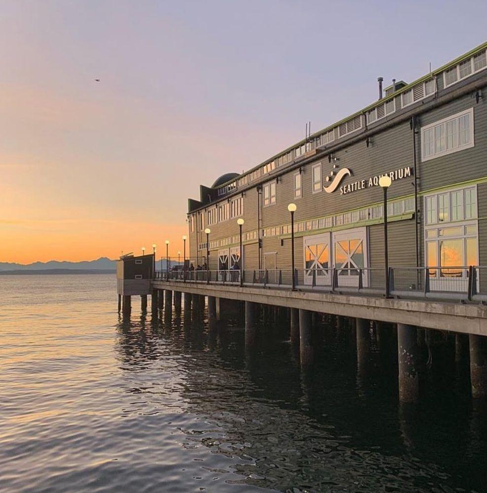 Seattle Aquarium: 1483 Alaskan Way, Seattle, WA