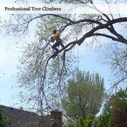 Photo Of Atlas Tree Service Salt Lake City Ut United States We