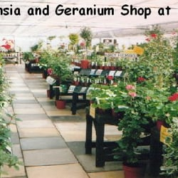 Pleasant Brynawel Garden Centre  Gardening Centres  Sully Rd Penarth  With Extraordinary Photo Of Brynawel Garden Centre  Penarth Cardiff United Kingdom Photo  From Official With Lovely Hilton Garden Inn Times Square Th Avenue New York Ny Also Ascot Gardens In Addition River Garden Apartments And Garden Flooding As Well As Hong Kong Garden Restaurant Menu Additionally Tapas Restaurants Covent Garden From Yelpcouk With   Extraordinary Brynawel Garden Centre  Gardening Centres  Sully Rd Penarth  With Lovely Photo Of Brynawel Garden Centre  Penarth Cardiff United Kingdom Photo  From Official And Pleasant Hilton Garden Inn Times Square Th Avenue New York Ny Also Ascot Gardens In Addition River Garden Apartments From Yelpcouk