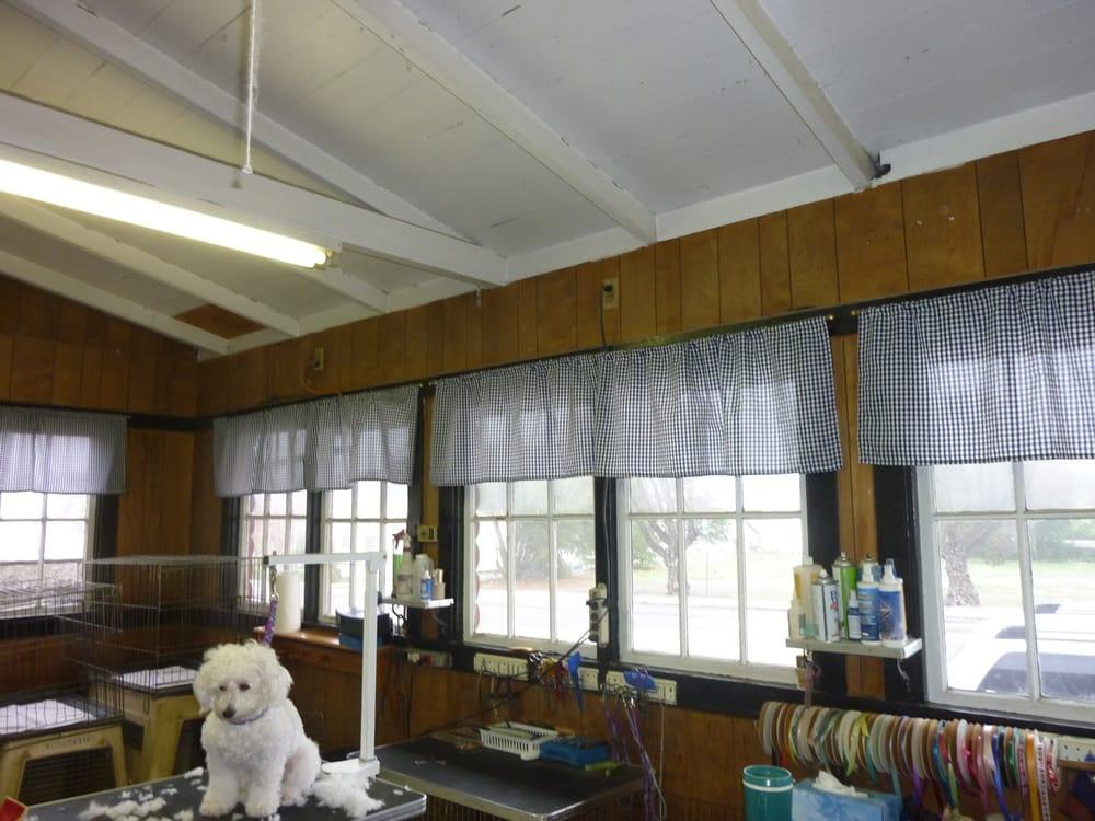 Poodle Parlor: 901 Alameda St, Vallejo, CA