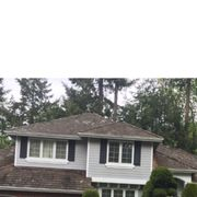 More Mold Photo Of Allways Roofing   Snohomish, WA, United States. 20 Year  Old Shake