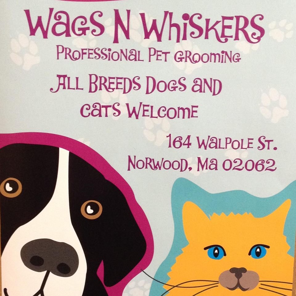 wags n whiskers