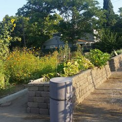 Photo Of Martin Luther King Jr Community Garden   Sacramento, CA, United  States.