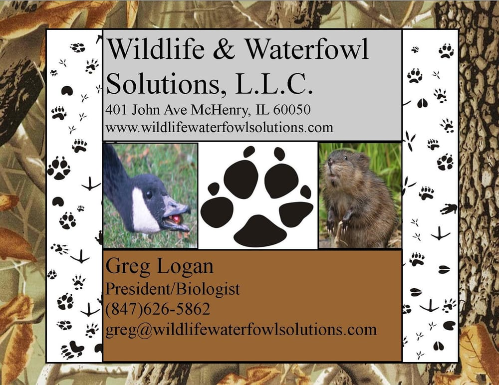 Wildlife & Waterfowl Solutions: 401 John Ave, McHenry, IL