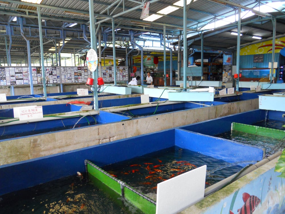 Photos for qian hu fish farm yelp for Fish farm 3