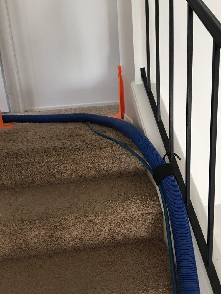 Carpet Zerorez Carpet Cleaning Reviews
