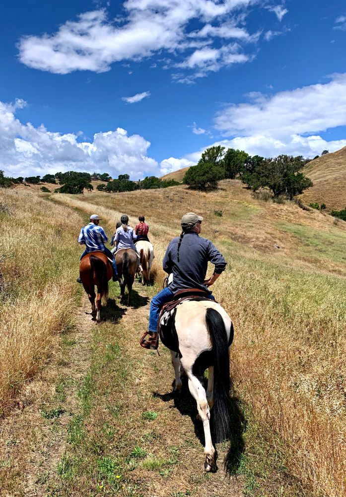 Sonoma Valley Trail Rides: Sonoma, CA