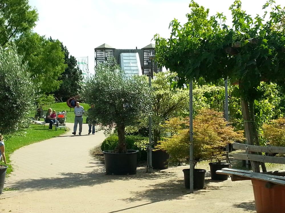 pflanzen mauk gartencenter progettazione di giardini e. Black Bedroom Furniture Sets. Home Design Ideas