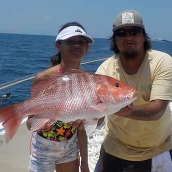 Nice red snapper caught and released today aboard the for Majesty deep sea fishing