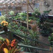 Photo Of South Pleasantburg Nursery Landscape Garden Ctr Greenville Sc United States