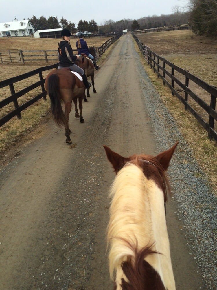 Kelly's Ford Equestrian Center: 16589 Edwards Shop Rd, Remington, VA