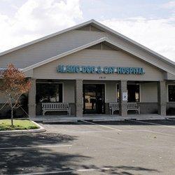 Alamo Dog Cat Hospital San Antonio Tx