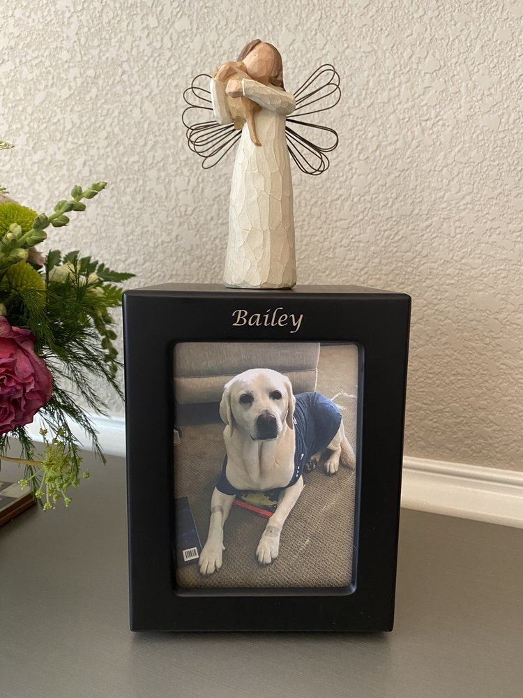 Lasting Paws Pet Memorial Services: 27292 County Rd 13, Johnstown, CO
