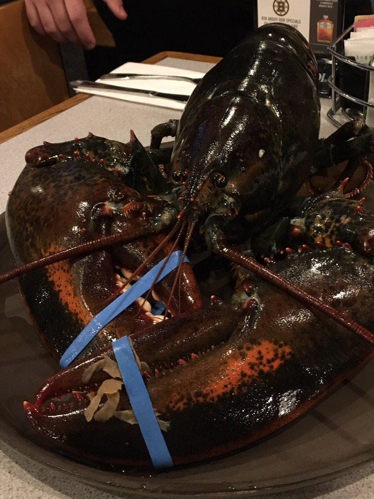 Lobster Tail - 36 Photos & 97 Reviews - Seafood - 4 Cobbetts Pond Rd, Windham, NH, United States ...