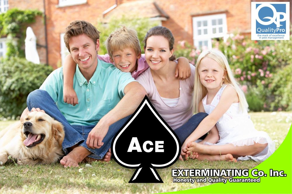 Ace Exterminating: 599 E 1st St, Russellville, KY