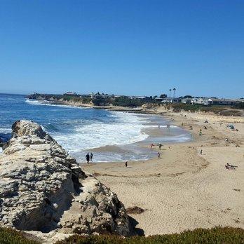 Natural Bridges State Beach 840 Photos 420 Reviews Beaches Swanton Blvd W Cliff Dr Santa Cruz Ca Phone Number Yelp
