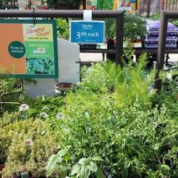 Armstrong Garden Centers 29 Photos 52 Reviews Garden Centres Linda Vista San Diego Ca