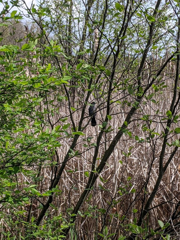 Mendon Ponds Park: 95 Douglas Rd, Honeoye Falls, NY