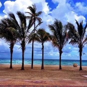 Restaurants In Hollywood Beach Florida Yelp