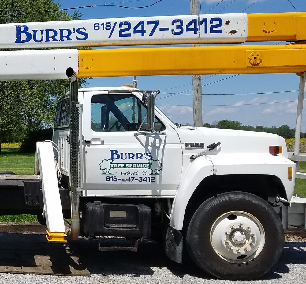 Burr's Tree Service: 3077 Old Route 51 Rd, Sandoval, IL