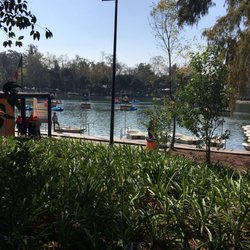 Jard n bot nico chapultepec 60 fotos parques paseo for Jardin botanico numero telefonico