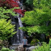 Anderson Japanese Gardens 156 Photos 85 Reviews Botanical Gardens 318 Spring Creek Rd