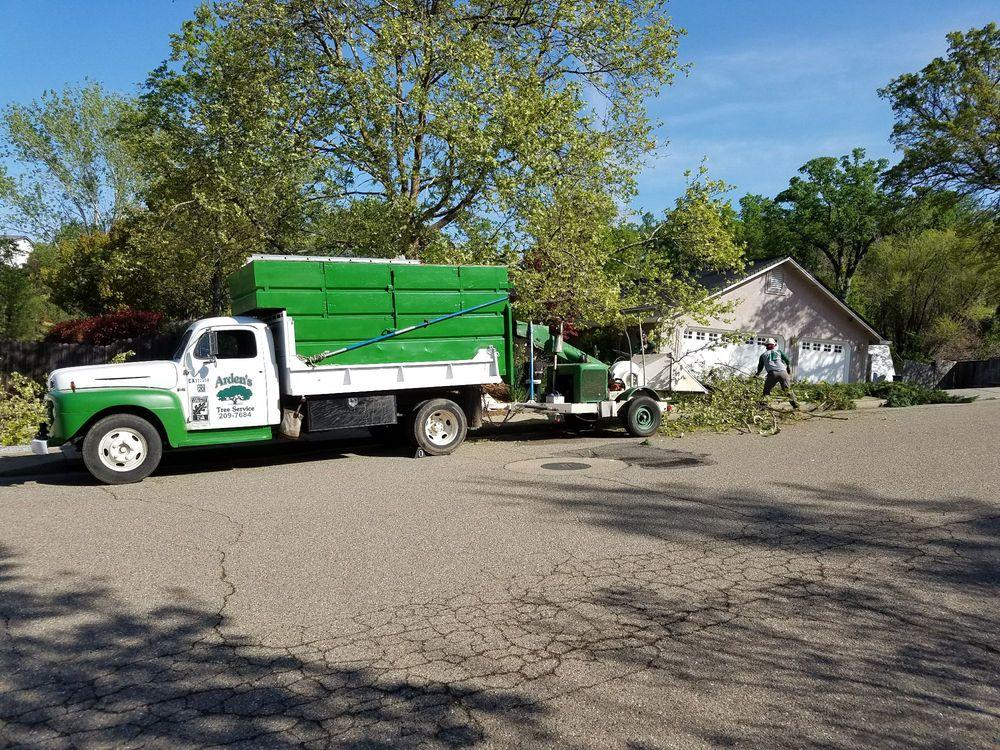 Arden's Tree Service: Anderson, CA