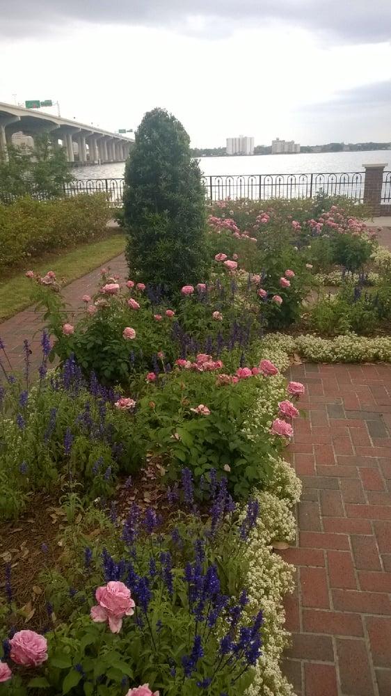 Photos For Cummer Museum Of Art Gardens Yelp