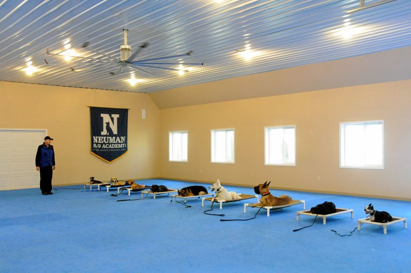 Neuman K-9 Academy: 14060 Irish Ave N, Hugo, MN