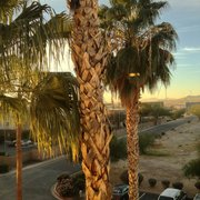 King Photo Of Red Roof Inn Tucson South   Tucson, AZ, United States. View