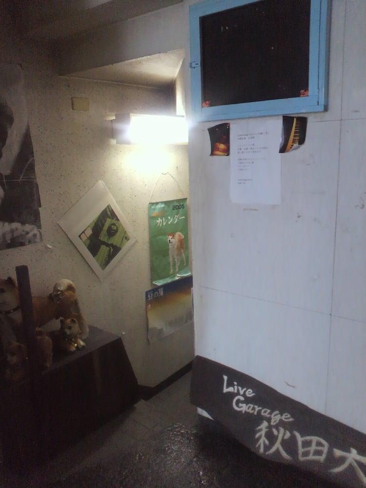 Live Garage Akita Dog