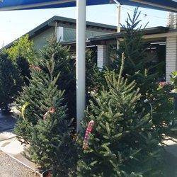 Photo Of Summerwinds Nursery Country Club Mesa Az United States Christmas