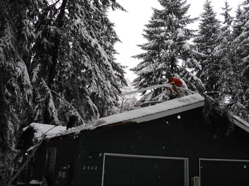 Bonnell Tree Technicians: 727 Washington St, Cosmopolis, WA